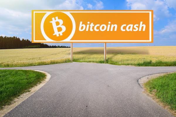 ビットコインキャッシュ(BitcoinCash/BCH)がすぐ買える?購入方法を紹介