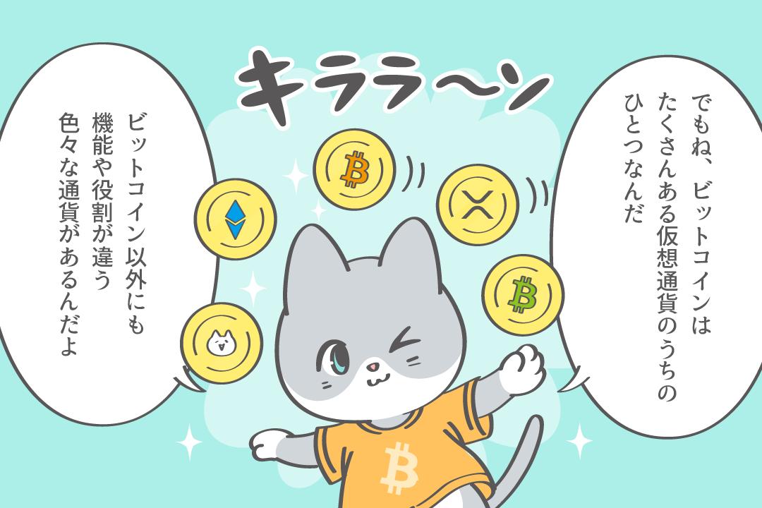 通貨の種類によって昨日や役割が異なる