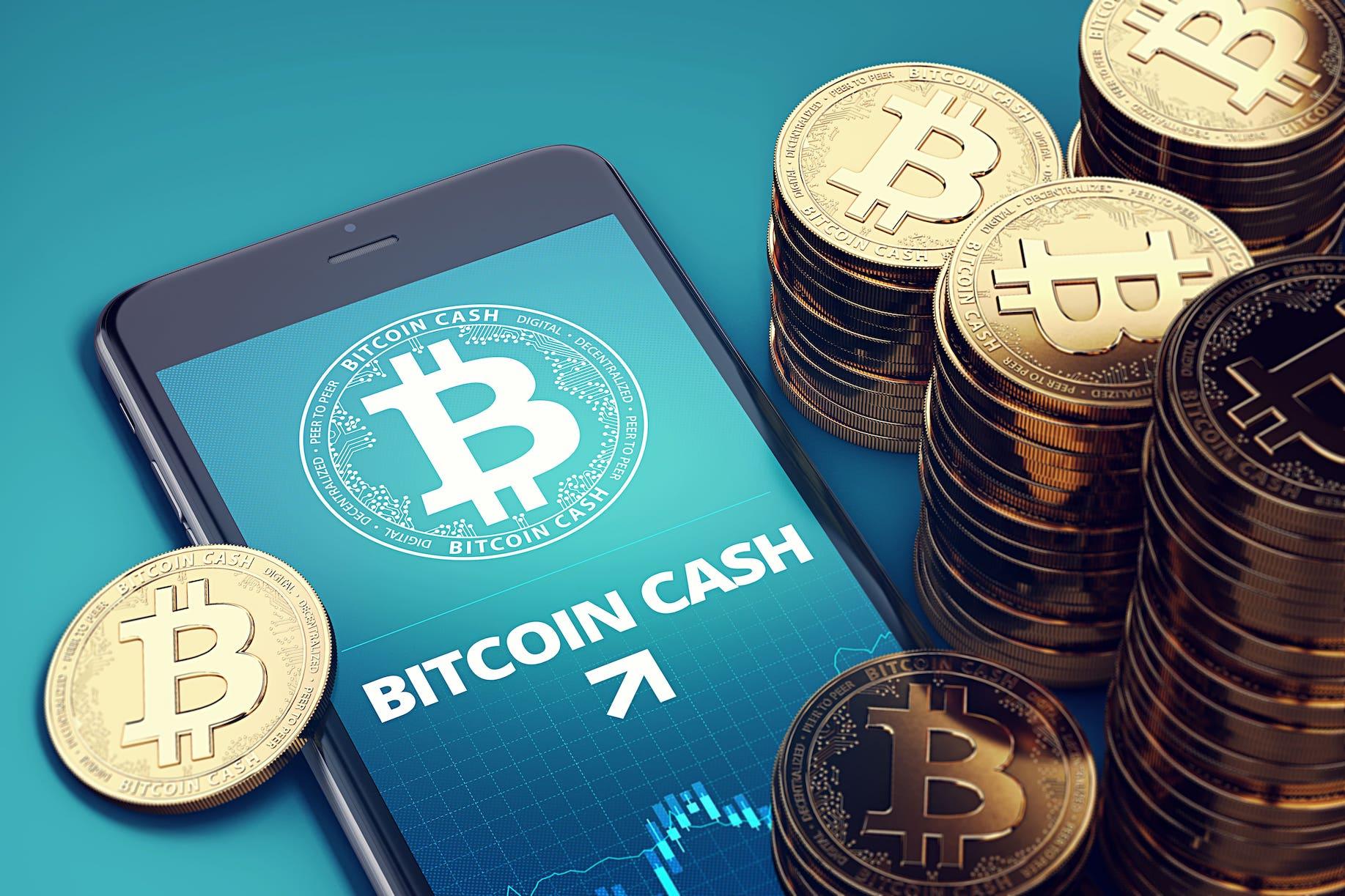 ビットコインキャッシュ(BitcoinCash/BCH)は将来的に儲かる?特徴と将来性について