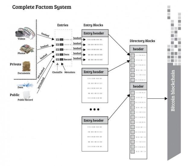 factomシステム